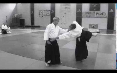 Curso de Aikido en Alhama de Murcia por Yasunari Kitaura Shihan