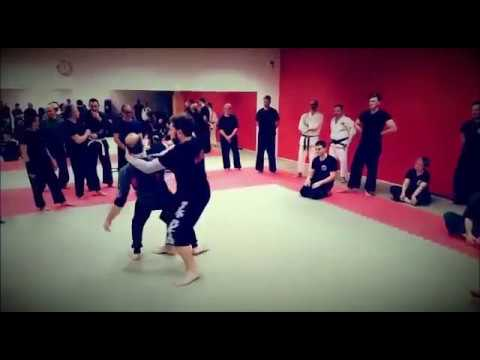 Silat Suffian Kuntau& locks _ Seminar Monselice(PD) 2017 Italia